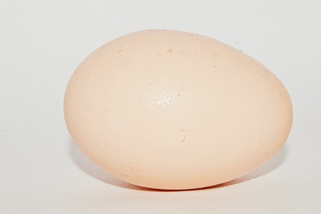 break fast: Single egg, usually for break fast and meal. Stock Photo