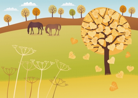linden tree: Fall countryside