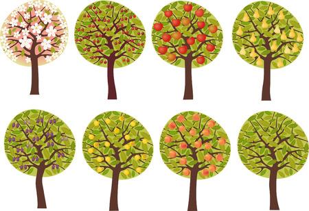 arbres fruitier: Les arbres fruitiers Illustration
