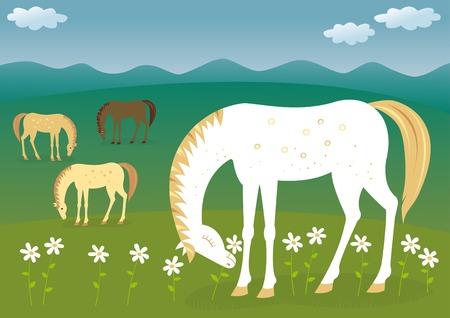 margriet: Paarden op de weide Stock Illustratie