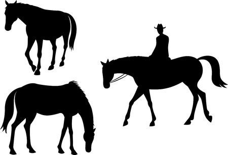 drafje: Silhouet van paard en ruiter Stock Illustratie