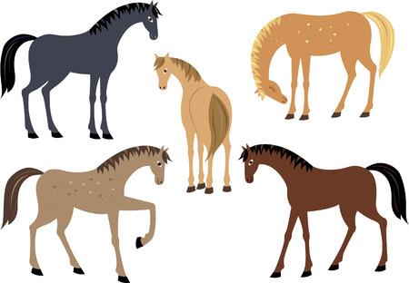poise: Set of horses