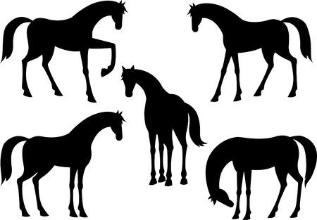 poise: Horses silhouette