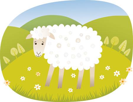lambkin: Sheep