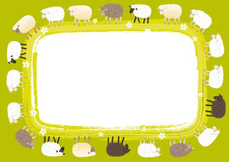 black sheep: Sheep card