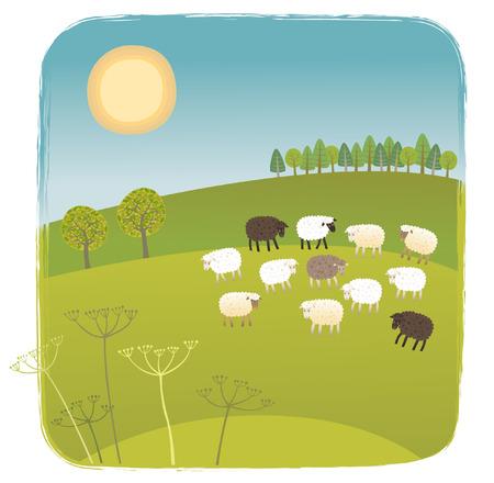 lambkin: Spring Illustration