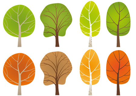 beech tree beech: Set of leafy trees Illustration