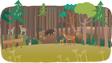 Forest full of animals Vectores