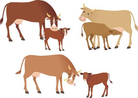 Krowy Ilustracje wektorowe