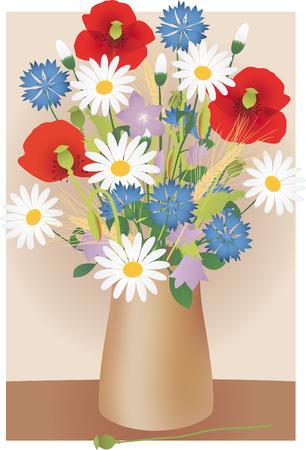 corn poppy: Wildflowers