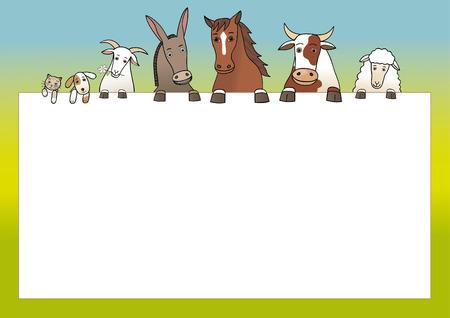 cow teeth: Farm animals and a copy space
