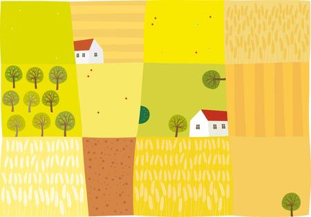 corn poppy: Fields to harvest Illustration