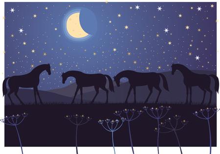 星空の下で夜の間に休憩の馬  イラスト・ベクター素材