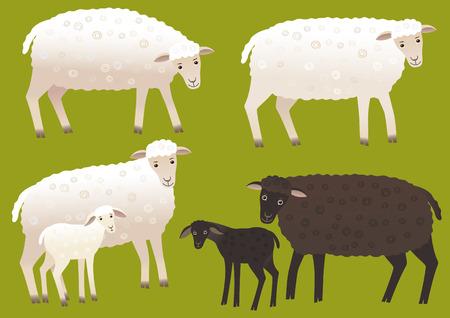 Set of sheep Фото со стока - 63803609
