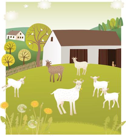Frühling Ziegen Standard-Bild - 63803612