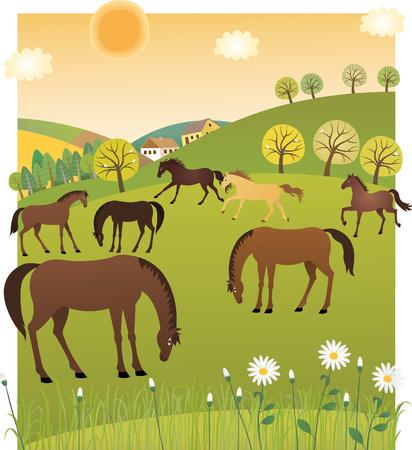 Spring horses Фото со стока - 63803630