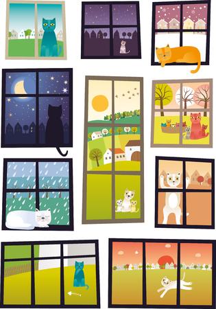 Katze in jedem Fenster Standard-Bild - 78491619