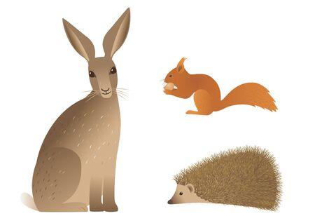 Vector image of hedgehog, squirrel and hare. Ilustração