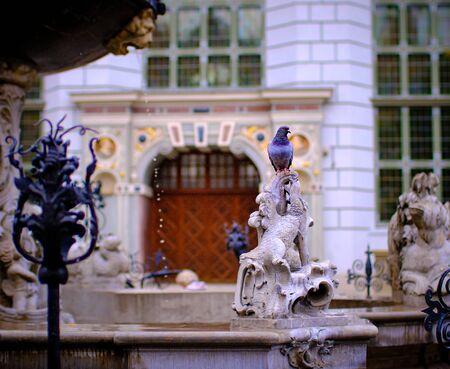 Duif zittend op de fontein van Neptunus in Gdansk, gemaakt vóór 1900, Impressies uit Gda?? Sk een havenstad aan de Baltische kust van Polen