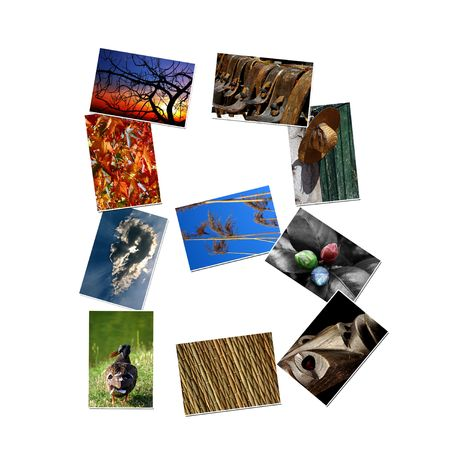 Alphabet letter made of collage photos
