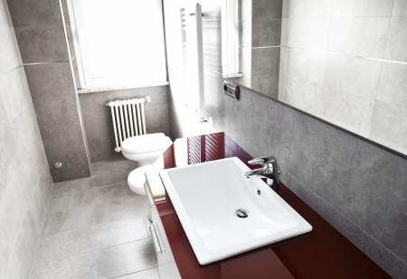 Red bathroom with toilette, bidet, heater, lavabo and mirror on high contrast
