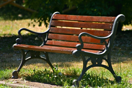 The sinuous lines of an old wooden bench, a good place to rest and relax Stock Photo - 16921702