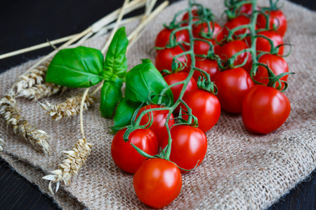 Cherry tomatoes with basil and ears on burlap Banque d'images