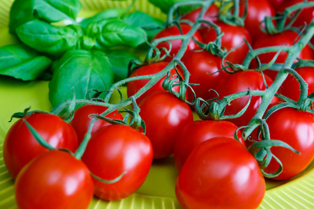 Cherry tomatoes with basil on light green tableware Banque d'images