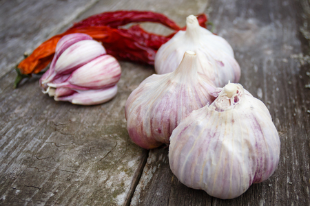 Organic garlic whole and cloves and dry chili on the rustic wooden background