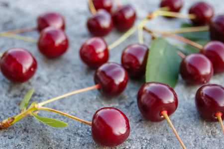 Fresh and juicy cherries just collected in the garden on a grey stone