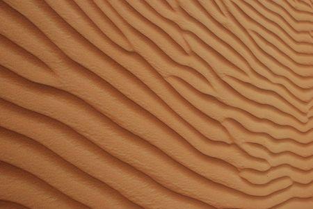 Desert of Arabia