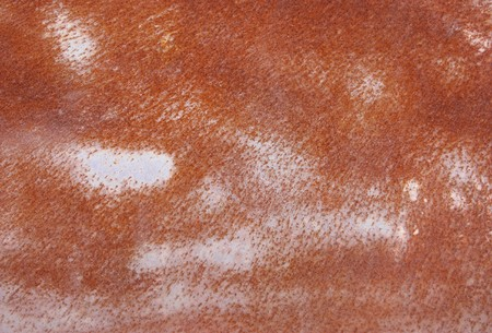 Close up of Rusty metal texture photo