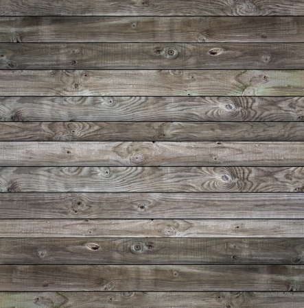 Grunge Wood panels for background  photo