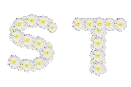 alphabet ST , White Flower isolated on white background  photo