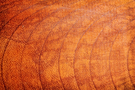 Wood texture for background Stock Photo - 9817056