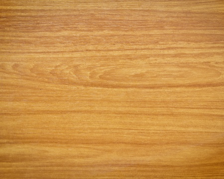 paneling: Texture of wood  Stock Photo
