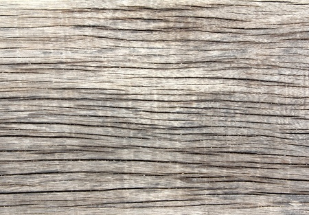 Detail of old wood texture Stock Photo - 9817148