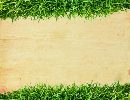 Green grass frame and old paper background