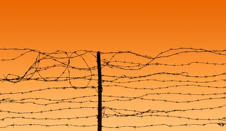 prison fence: Barbed wire at sunset sky