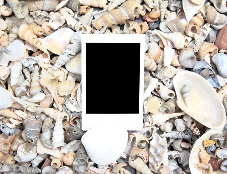 Blank photo frame on sea shell background photo