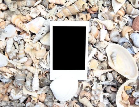 Blank photo frame on sea shell background photo