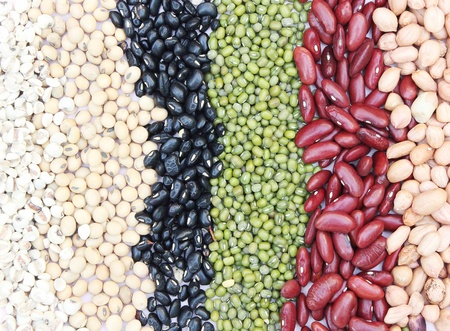 Varieties of beans on Dish, Job Tear, Soy Bean, Black Bean, Mung Bean, Red Kidney bean, Ground bean photo