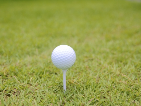 Golf ball on tee ,Focus on the ball  Stock Photo - 13661601