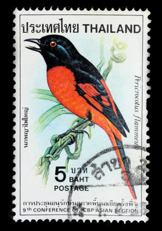 ged: THAILAND - CIRCA 1985   A postage printed in Thailand shows image of Thai bird with the inscription  Pericrocotus Flammeus , from 9th Conference of CBP Asian Section, CIRCA 1985
