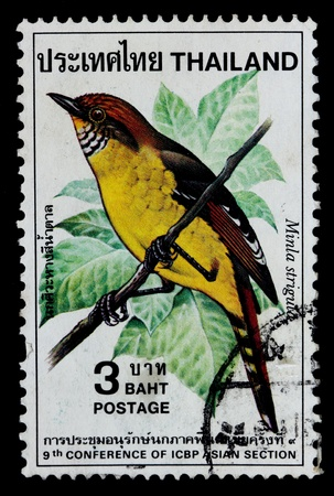 ged: THAILAND - CIRCA 1985   A postage printed in Thailand shows image of Thai bird with the inscription  Minla Strigula , from 9th Conference of CBP Asian Section, CIRCA 1985 Stock Photo