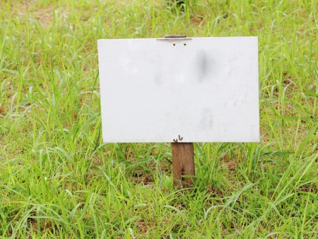 Empty wood sign on grass Stock Photo
