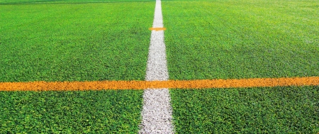Soccer field with line for background Stock Photo - 14625362