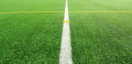 Soccer field with line for background Stock Photo - 14625361