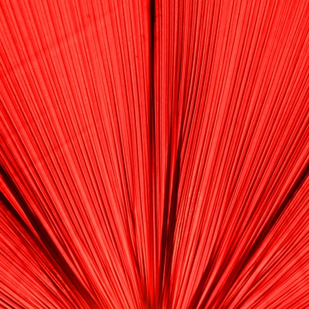 lamp shade: Fabric of Lamp Shade detail for background Stock Photo
