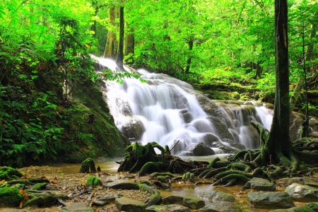 Waterfall in forest Stock Photo - 16843076
